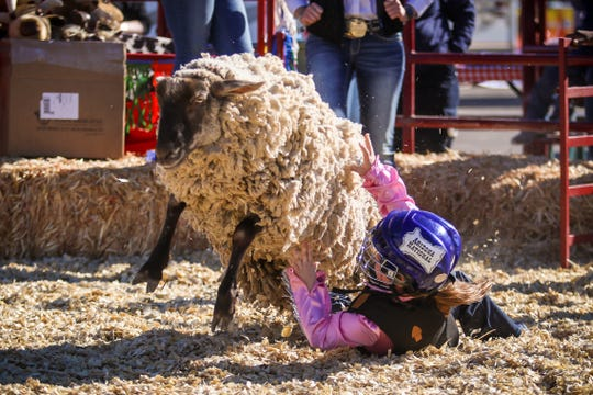 The Lil' Buckaroo Rodeo at the Arizona National Livestock Show.