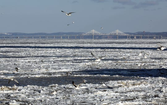 Seagulls fly over the frozen Hudson River as the new Gov. Mario M. Cuomo bridge looms in the background, as seen from the Yonkers city pier, Jan. 5, 2018.