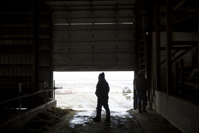 As tough times continue in the farm sector, more farmers are calling it quits.