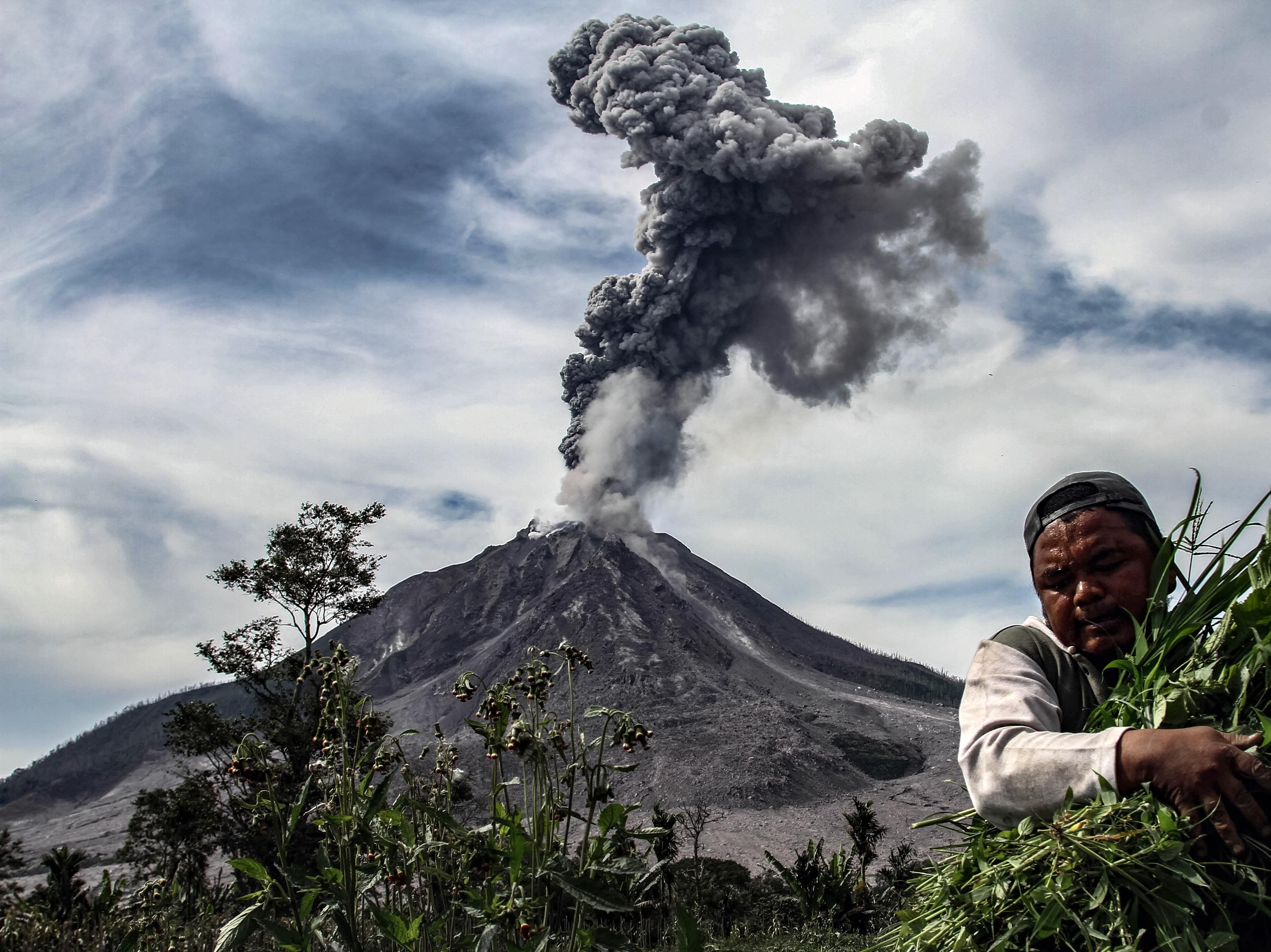 Jan. 6, 2018: A man carries his harvest from his vegetable field, as Mount Sinabung spews thick smoke, in Karo, North Sumatra.
