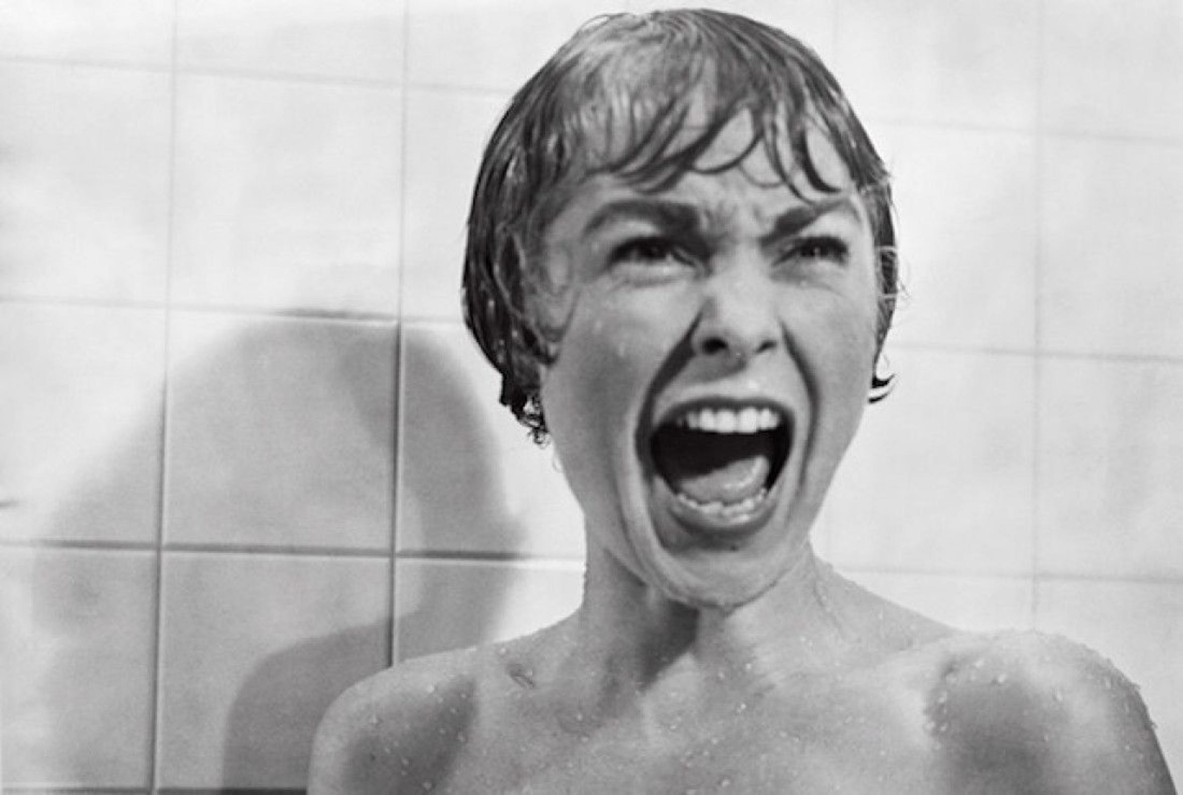 "Janet Leigh screams in an iconic scene from Alfred Hitchcock's classic ""Psycho."" The book was based on the novel of the same name by Wisconsin author Robert Bloch."