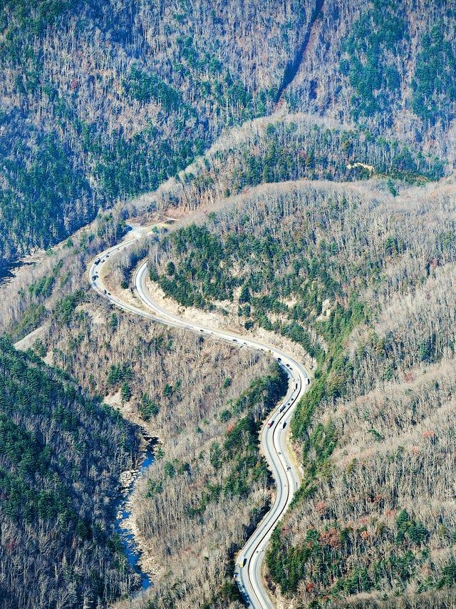 Will bears, elk and deer soon be getting their own highway overpasses?