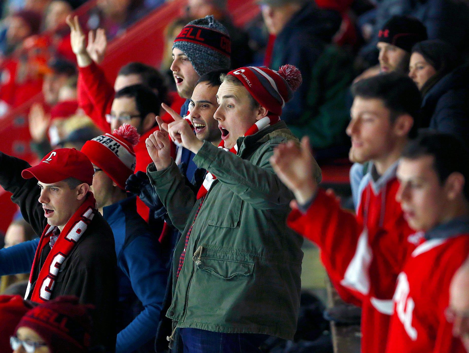 Cornell versus Princeton Men's hockey. Friday, January 5, 2018.
