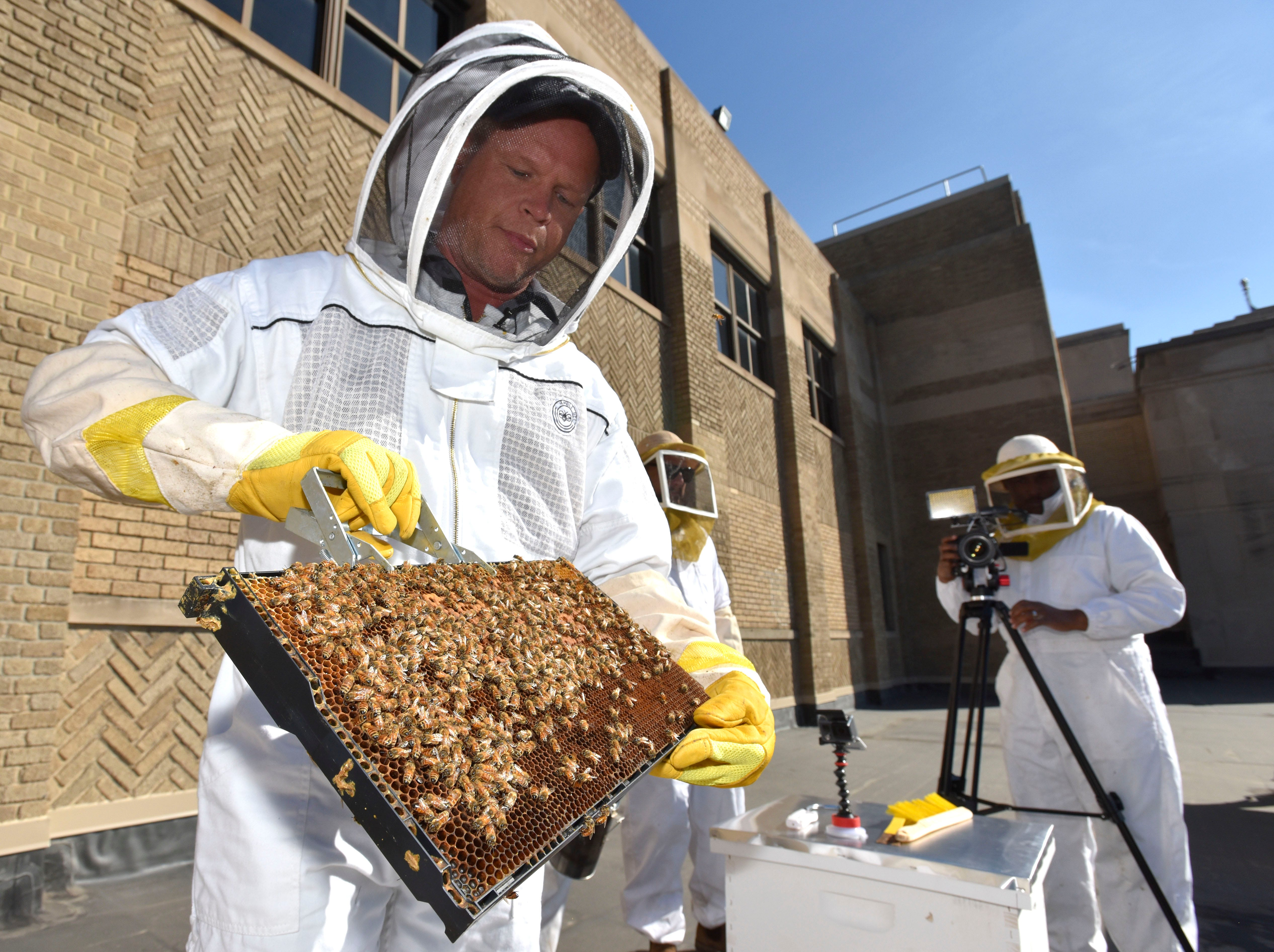 'Bees in the D' co-founder Brian Peterson-Roest, 43, of Detroit, talks about his bees on the top of the former Detroit News building at 615 W. Lafayette on   April 26, 2018. The nonprofit's mission is to contribute to the health of honey bee colonies and the education of their importance to our environment.