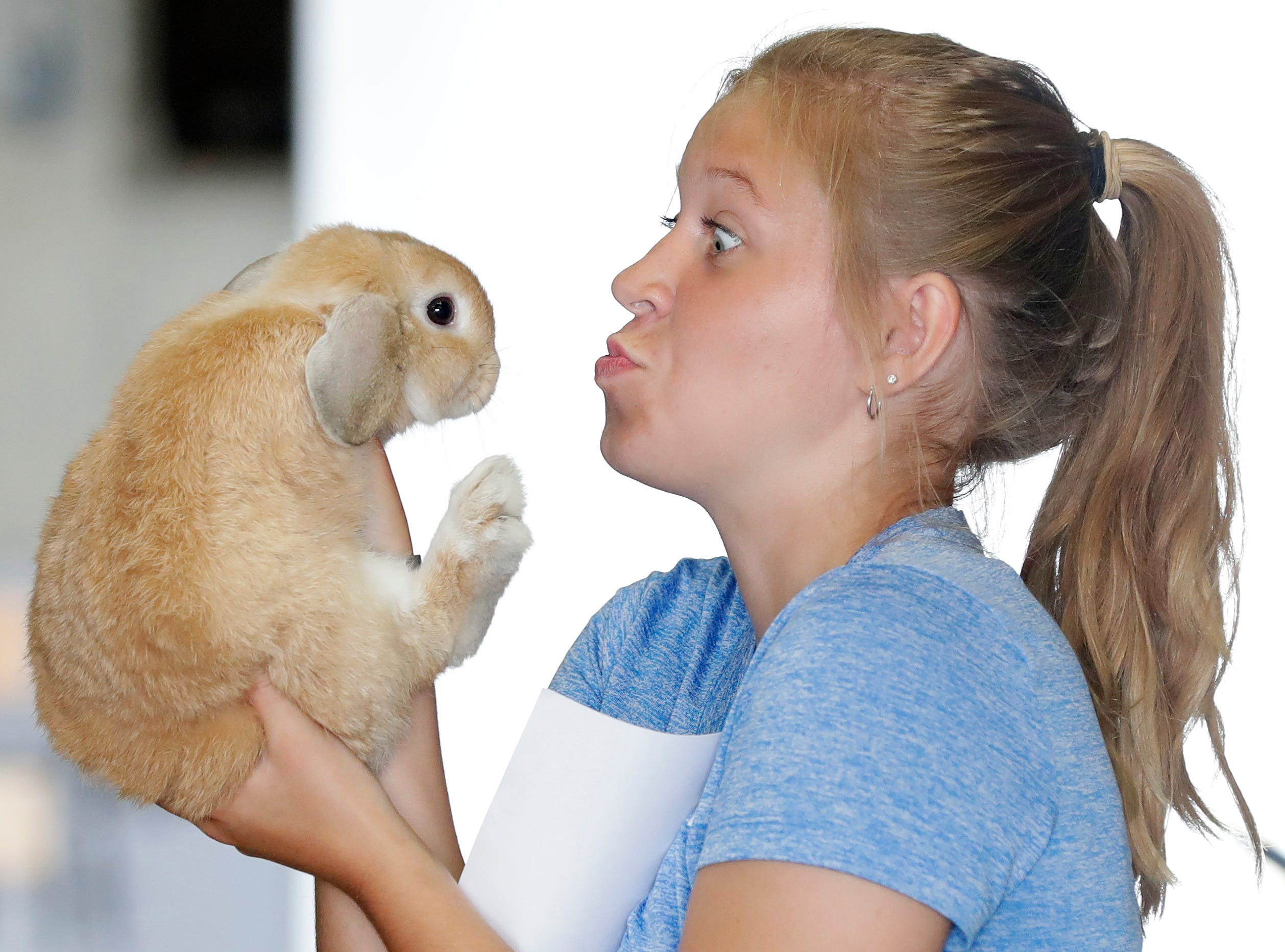Paige Vanderveren makes faces at her rabbit on the opening day of the Brown County Fair on Wednesday, August 15, 2018 in De Pere, Wis.