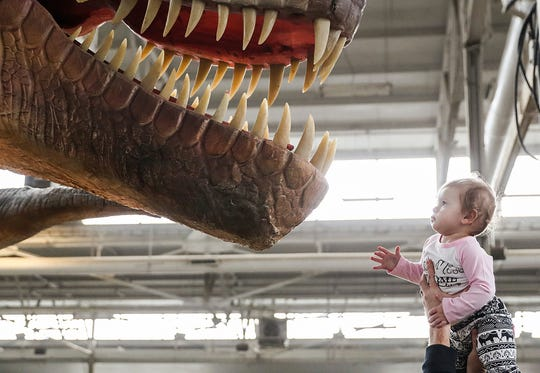 Joselyn Johnson, 1, is held up by her father, Matt Johnson, to get a closer look at a Tyrannosaurus rex at the Jurassic Quest attraction at the State Fairgrounds in Indianapolis, Saturday, Nov 17, 2018. The event features life-sized dinosaur replicas and leads guests through the Cretaceous, Jurassic and Triassic periods.