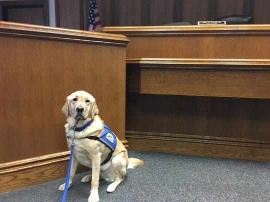 Zurg shown in a Prattville courtroom.