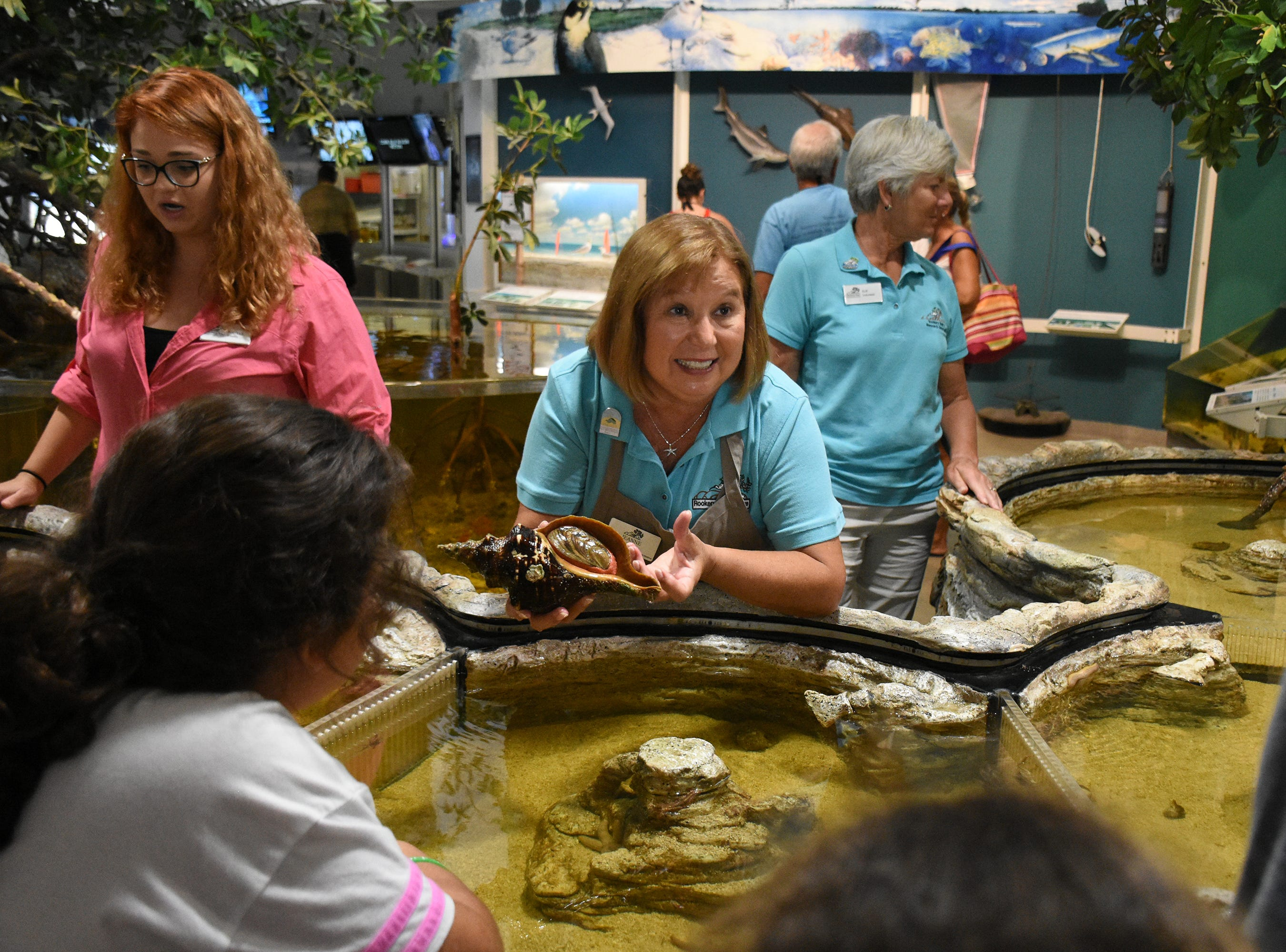 Docent Jeanne Condle displays a horse conch at the touch tank during Estuaries Day at Rookery Bay's Environmental Learning Center in September.