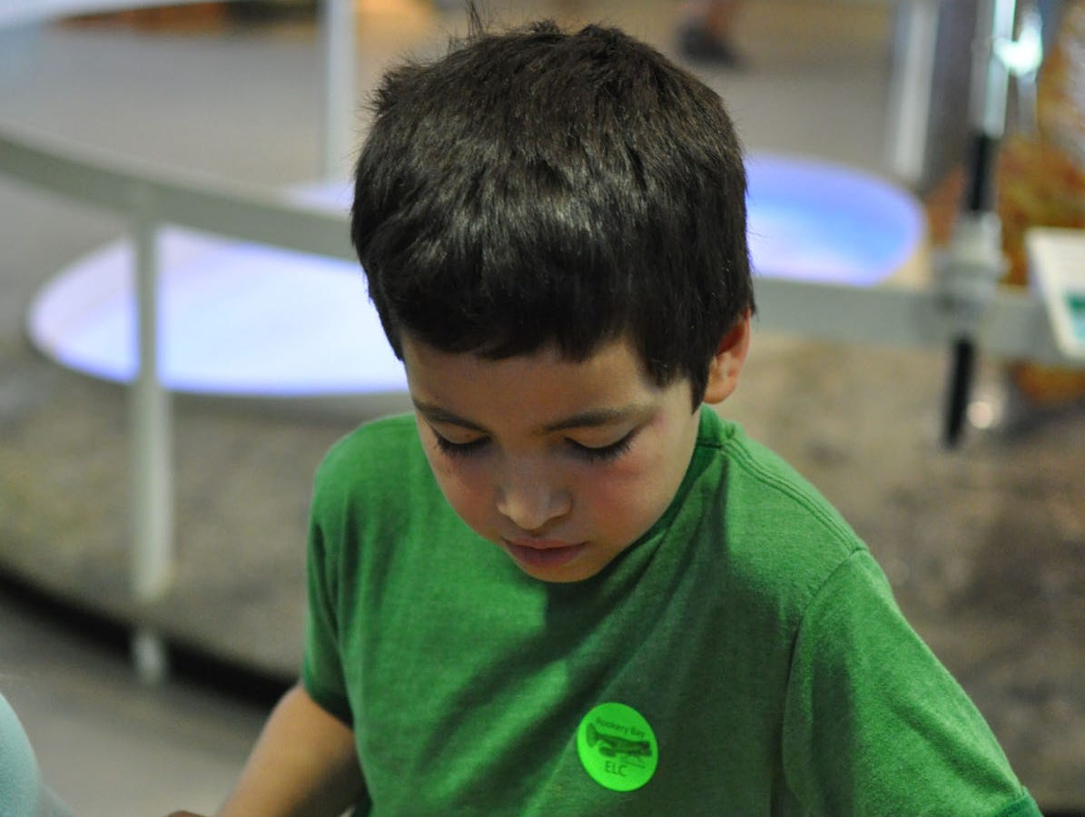 Gianfranco Luxardo, 7, holds a live starfish in the touch tank at Rookery Bay National Estuarine Research Reserve's headquarters.