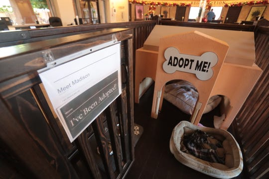 A dog house for adoptable dogs in the lobby of Westin Mission Hills in Rancho Mirage on Thursday, December, 20, 2018. The hotel has partnered with local animal shelter,  Animal Samaritan, to show adoptable dogs in the hotel lobby.