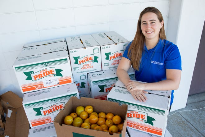Christa Court, an economist with the University of Florida Institute of Food and Agricultural Sciences, with freshly harvested oranges at a student citrus sale event on the UF main campus in Gainesville on Dec. 7. Court is part of a team that produced a new report on the economic contributions of Florida's citrus industry in the 2016-17 growing season.