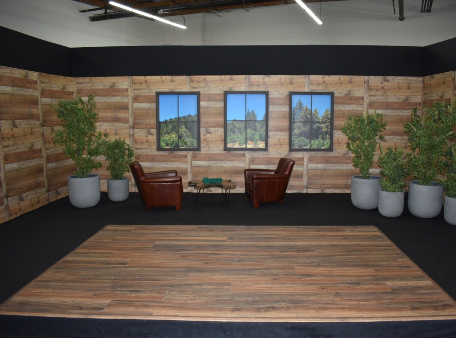 """A set at Green Flower in Ventura features fake cannabis plants from a company that provided props for the Showtime series, """"Weeds."""" Green Flower is a cannabis education company."""