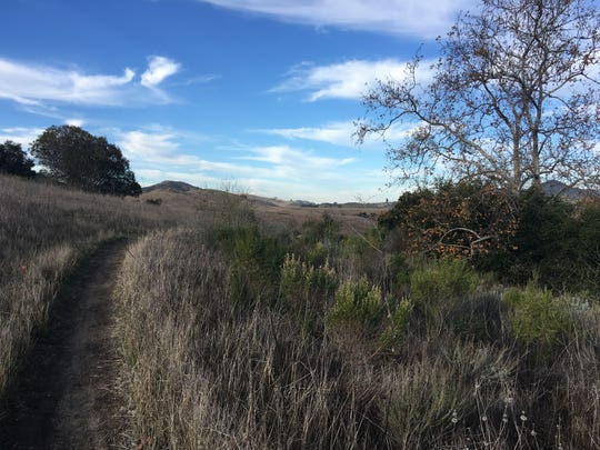 A trail winds through Rancho Sierra Vista, part of the Santa Monica Mountains National Recreation Area.