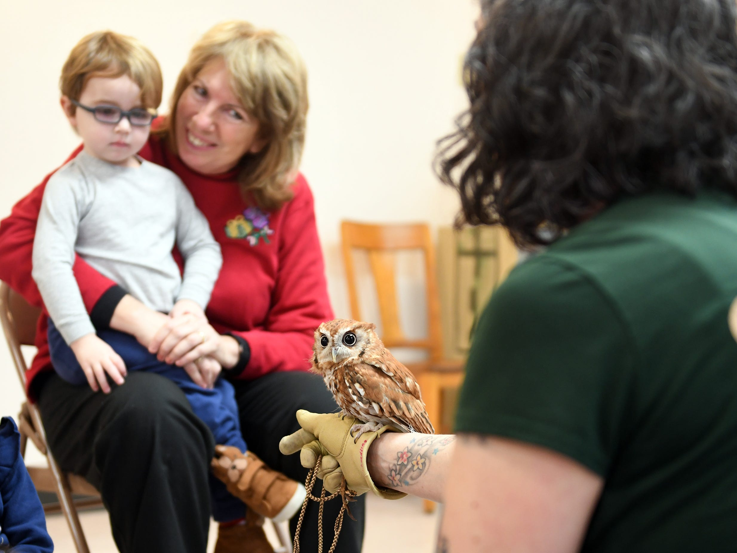 Cohanzick Zoo zookeeper Alison Bohn shows off a screech owl named Wisp William during Zoobrary time as Cheryl Fox holds Jackson, 3, of Vineland at the Bridgeton Public Library on Thursday, December 20, 2018.