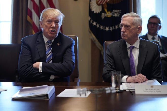 President Donald Trump (left) is pictured speaking with Defense Secretary James Mattis (right) during a Cabinet meeting in the White House.