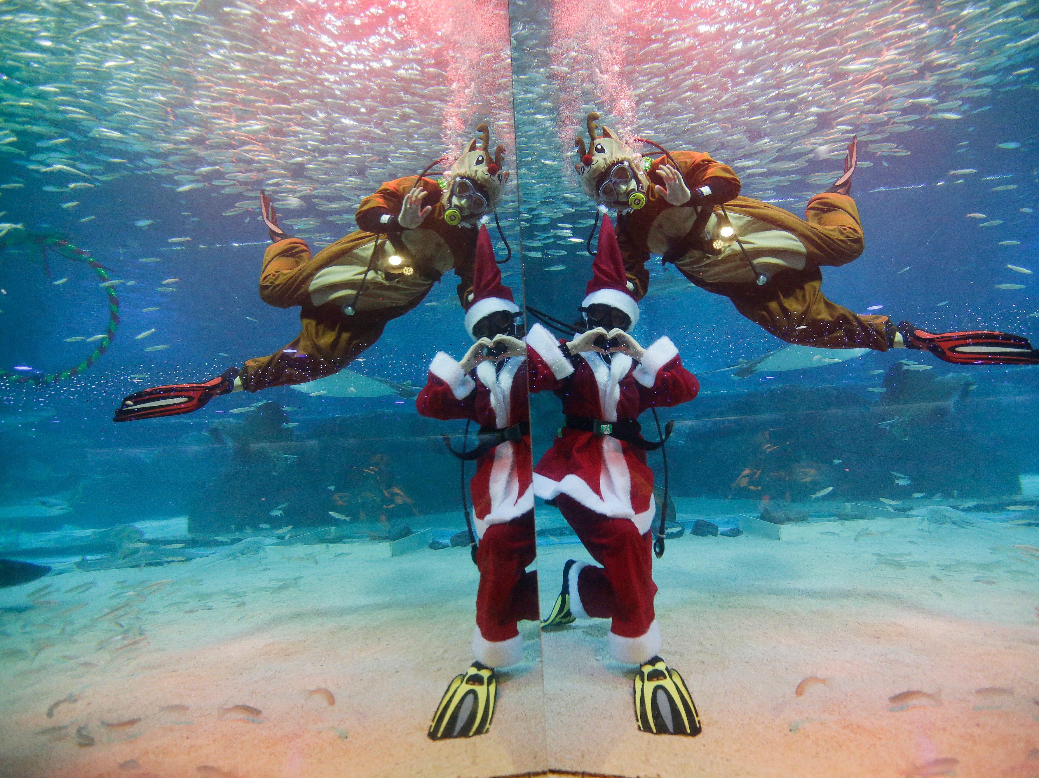 Divers dressed in Santa Claus and Rudolph costumes perform at the Coex Aquarium in Seoul, South Korea, Tuesday, Dec. 18, 2018.