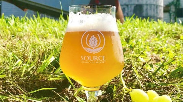 French-style saison from Source Brewing in Colts Neck.