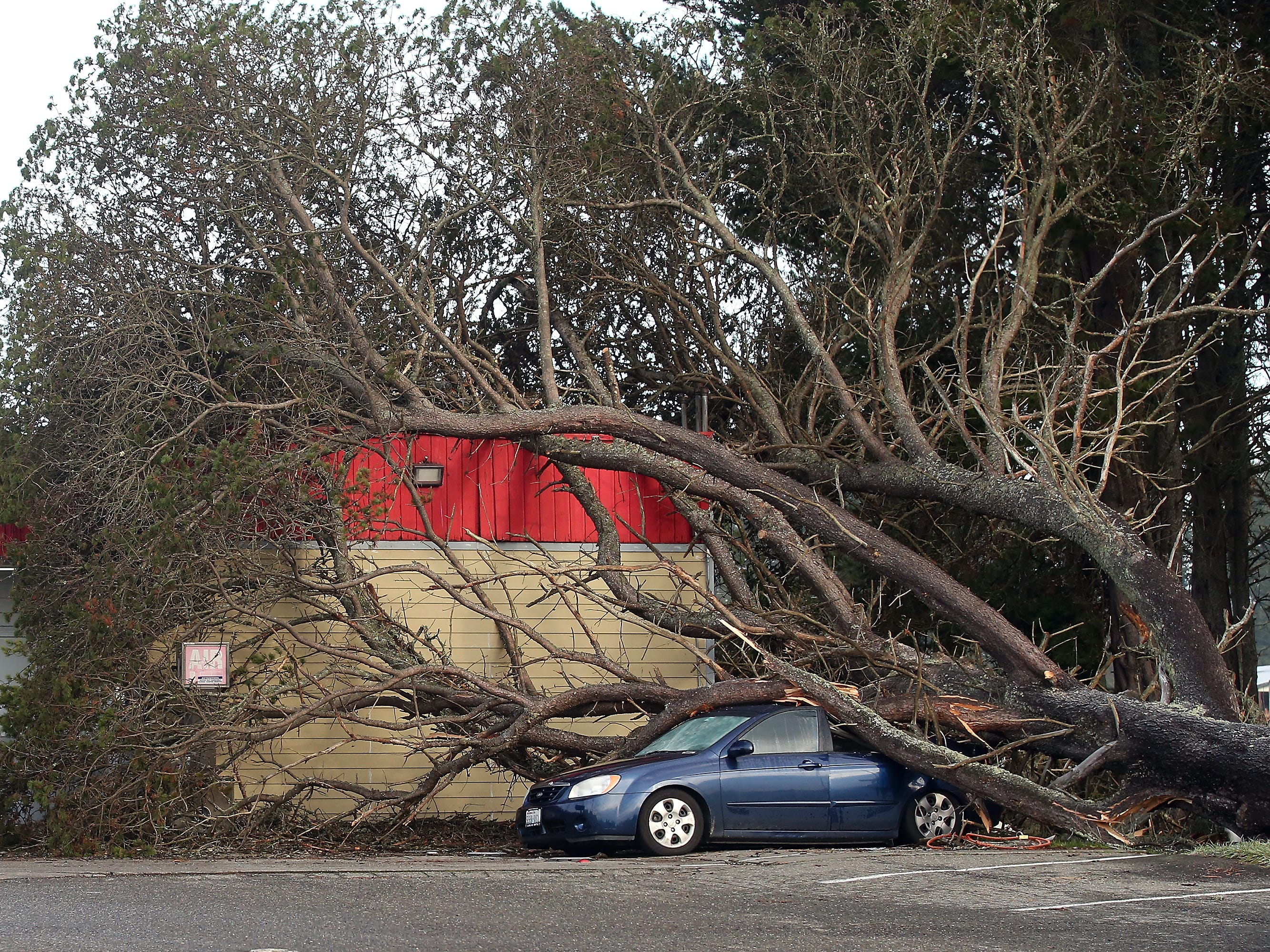A tree brought down by Thursday's wind storm rests on top of a car at the Central Valley Store on Central Valley Rd in Poulsbo on Friday, December 21, 2018.