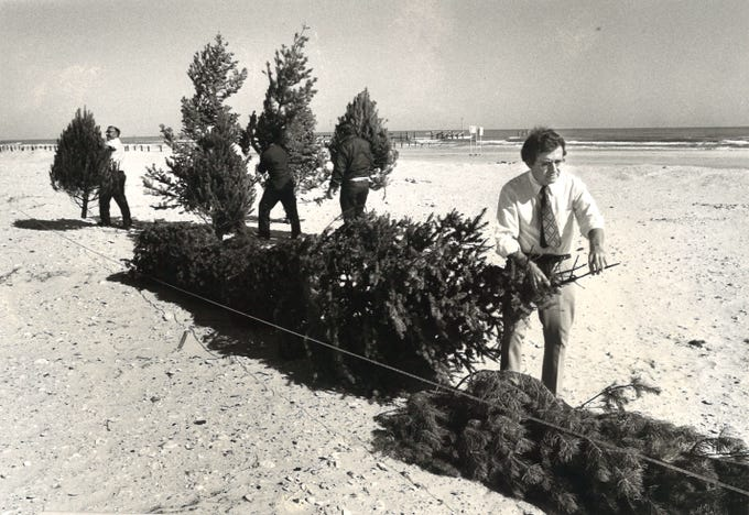 Nueces County Commissioner J.P. Luby (right) and his workers arranged about 1,000 discarded Christmas trees along Padre Island near Bob Hall Pier on Jan. 4, 1982. The line of trees was about 100 feet long and 6 feet high and part of efforts to restore sand dunes following Hurricane Allen in 1980.