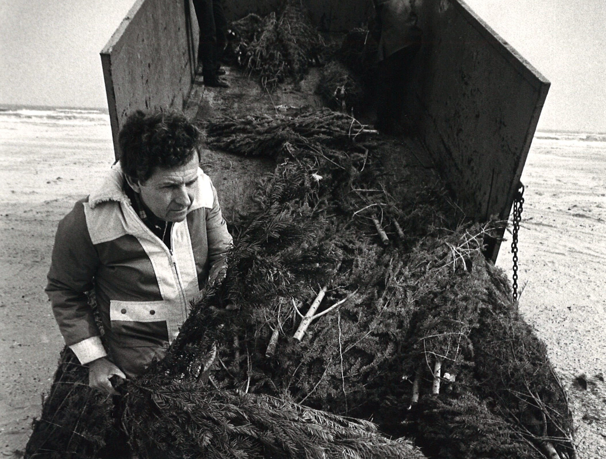 Nueces County Commissioner J.P. Luby helps unload a Christmas tree from a county dump truck on Padre Island on Jan. 3, 1983. An estimated 1,200 trees were donated to rebuild the sand dunes.