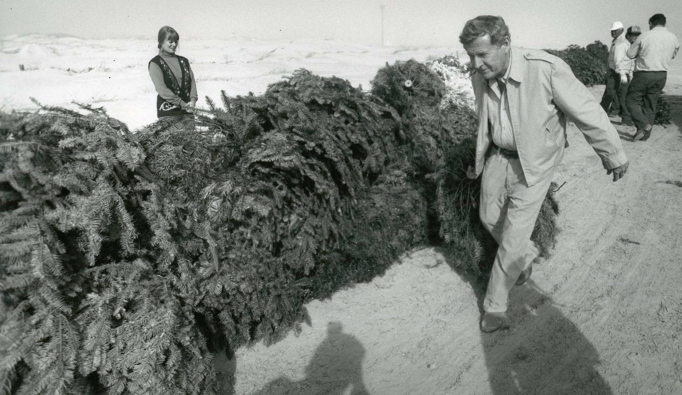 Nueces County Precinct 4 Commissioner J.P. Luby drags a discarded Christmas tree to add to a pile arranged to trap sand and form dunes on Padre Island on Dec. 28, 1990. When this photo was snapped, Luby had only three days left on the job he'd held for nearly 16 years.