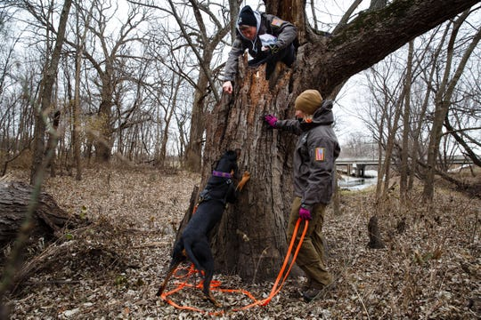Tammy Hansen, right, works with her dog, Bailey, to find Marsha Patterson, in the tree, who served as a decoy during a trailing drill at Heritage Park on Wednesday, Nov. 28, 2018, in Ankeny. Hansen and Patterson are part of a group of women who assist authorities across the country in tracking missing persons.