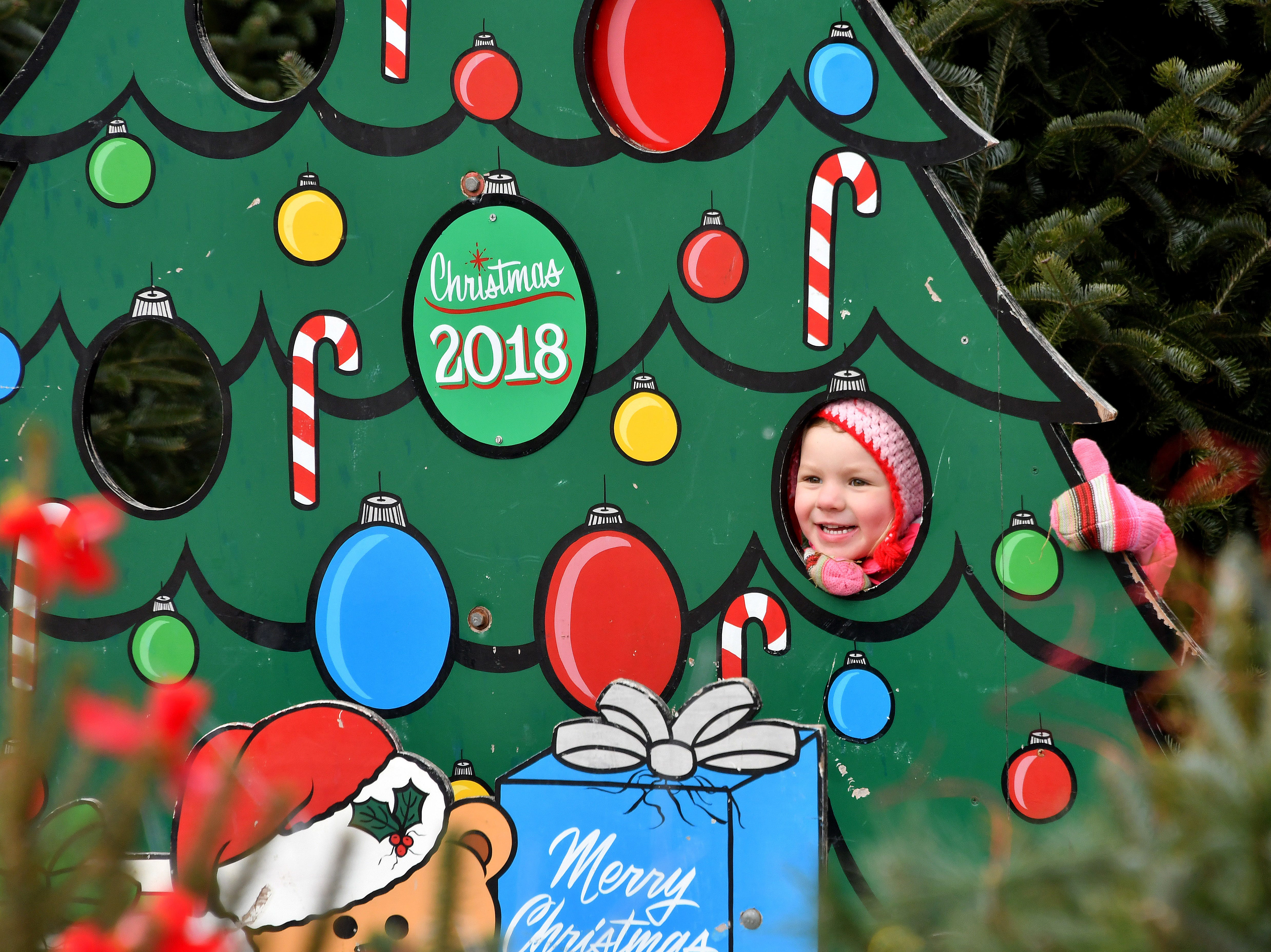 The Kluck's Christmas Tree Village offers concessions, a warming area, plenty of photo opportunities and a play area for kids.