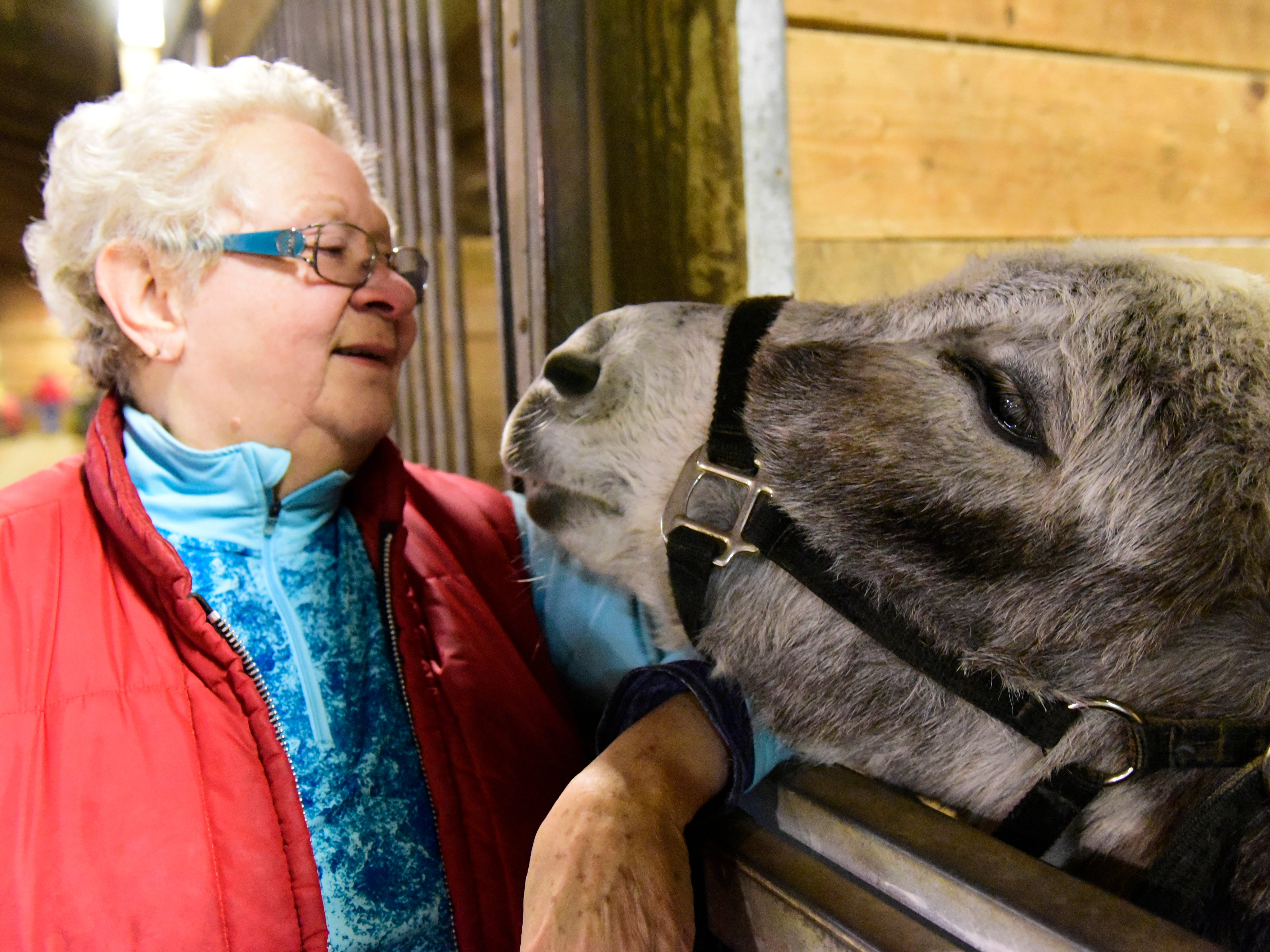 Lee Carrington, administrative assistant with Riders Unlimited, Inc., enjoys a playful moment with Davey the donkey.