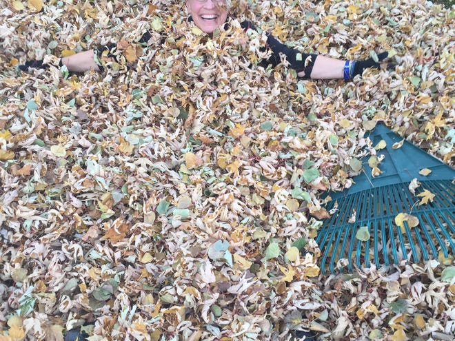 Scheels employee Wendy Lee takes some time to have fun during a break from raking leaves at an elderly person's home as part of United Way's annual Day of Caring. Scheels announced giving more than $57,000 to 22 nonprofits on Thursday.