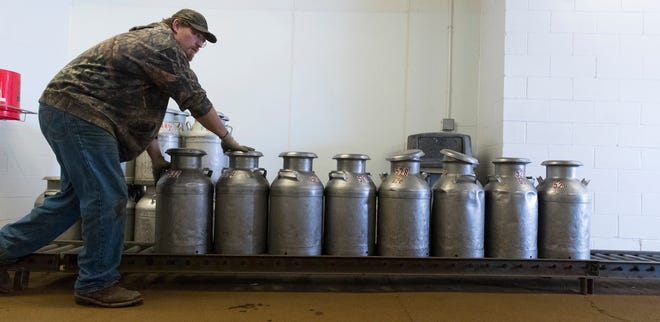 Milk truck driver Troy Dobbratz pushes steel milk cans on rollers to load into his truck after they were emptied at  K&K Cheese in Cashton. This cheese factory  is one of a few dairy plants in the state that still accepts Amish milk in the 80-pound steel milk cans.