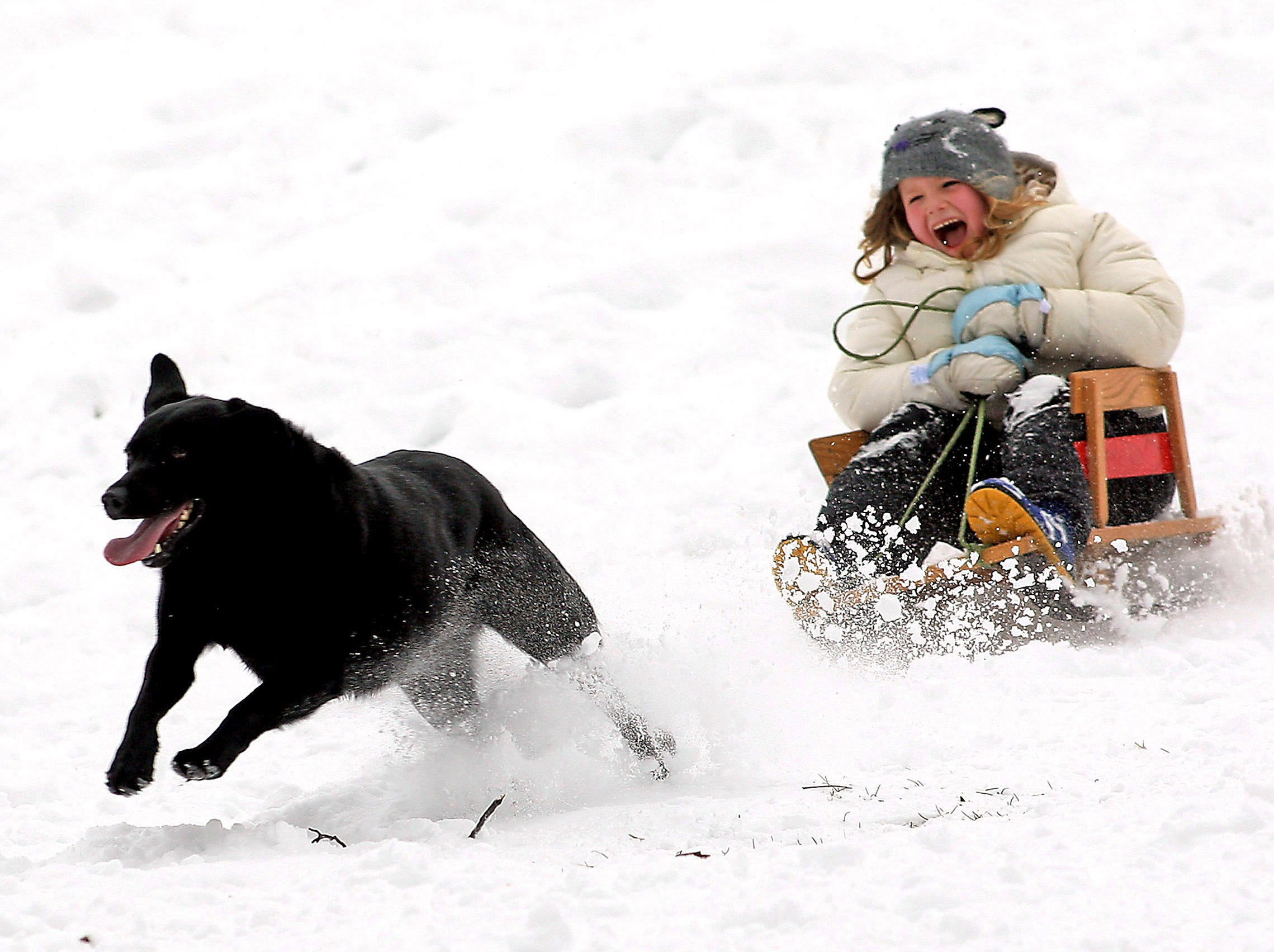 Morris Plains, 01/21/12---6-year-old Julia Breslin of Morris Plains flies down the hill at the Mountain Way School with her dog, Ella while sledding as New Jersey's streak of snow-free weather this winter ended Saturday as six inches fell across Morristown and much of the Garden State. 
