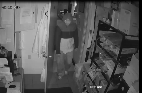 A picture captured via security camera of a man police say is a suspect in the burglary of Frogs Hollow Tavern, 2271 Route 72 N., Swatara Township at 1:50 a.m. Nov. 27.