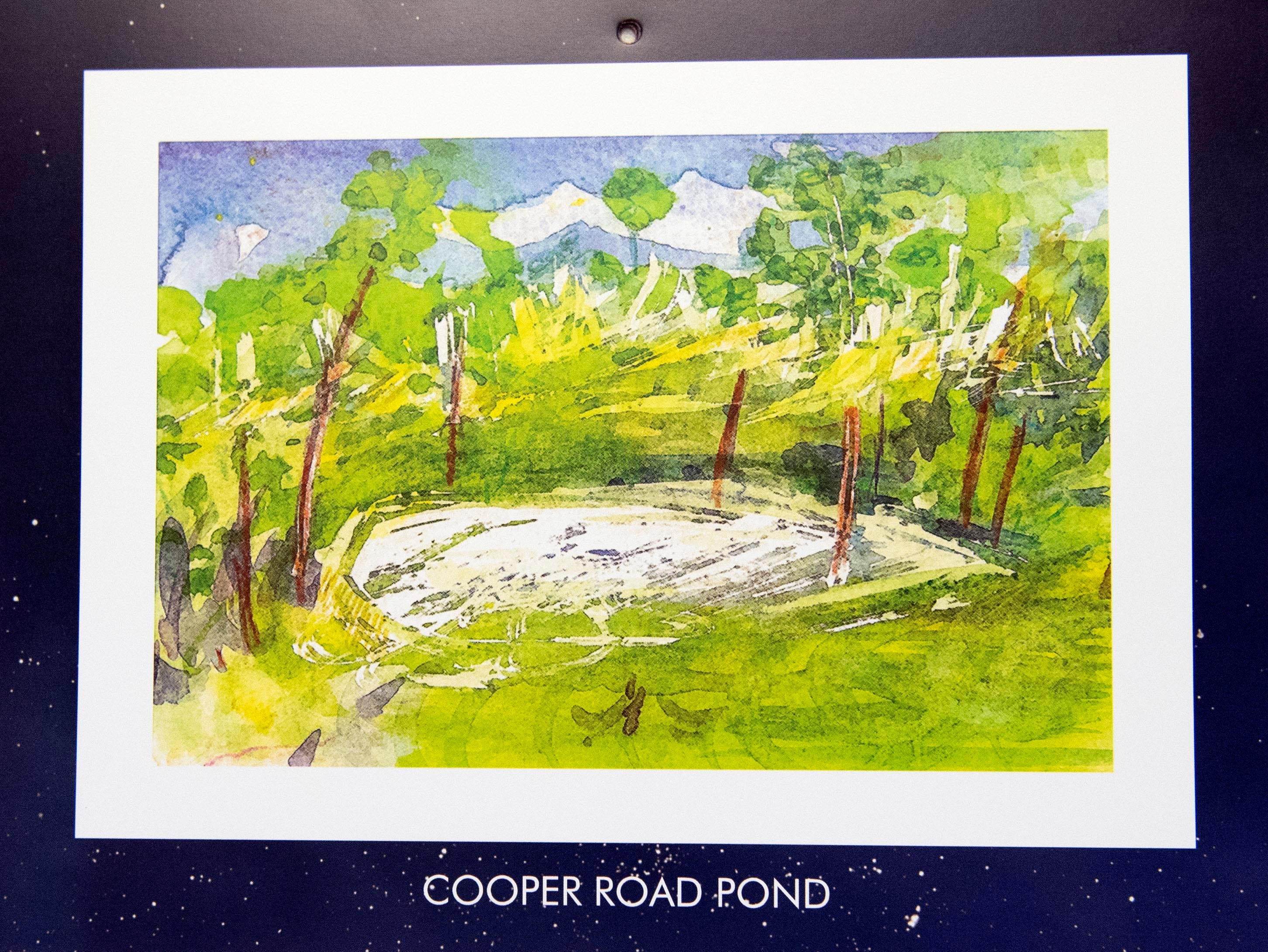 This pond, featured on the month of June, is a common sight for Mary Magenta. She said sometimes, when she's feeling energetic, she rides her bike past this pond near her home a few times a day. Magenta's 2019 calendar, 'Around Here,' features many places from York County.