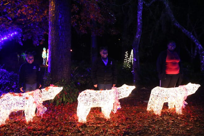 Samari McKay, 8, left, Sarai McKay, 10, center, and Serenity McKay, 12, pose for a photo with polar bears shining with lights at Elf Night at Dorothy B. Ovens Park, Thursday, Dec. 21, 2018.