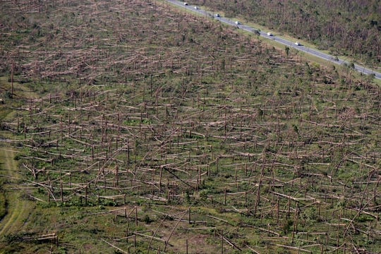 In this Oct. 12, 2018, file photo, downed trees are seen from the air on Tyndall Air Force Base in the aftermath of Hurricane Michael near Mexico Beach. It was once argued that the trees would help save Florida's Panhandle from the fury of a hurricane, as the acres of forests in the region would provide a natural barrier to savage winds that accompany the deadly storms. Instead the pines snapped like toothpicks. (AP Photo/Gerald Herbert, File)