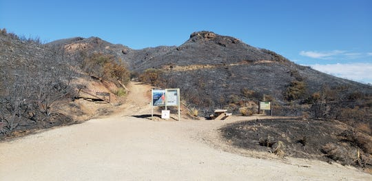 This picture of a trail leading up to Sandstone Peak in the Santa Monica Mountains was taken last month after the fire.