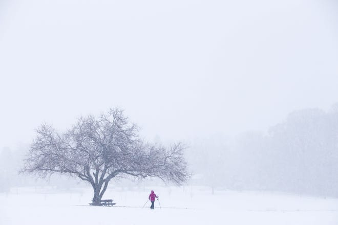 Wilmington resident Mary Nardo goes cross-country skiing across Delcastle Park Wednesday.