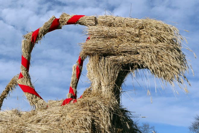 Bundles of rice straw are wrapped around a metal superstructure for the Yule goat at Old World Wisconsin in Eagle.