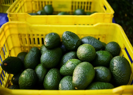 Almost 90% of the U.S.'s avocados come from Mexico.