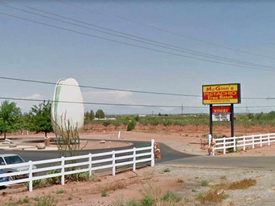 """New Mexico: You can't miss McGinn's Pistachio Tree Ranch while driving on Highway 54 through Alamogordo - the """"World's Largest Pistachio"""" is perched out front to ensure that!"""