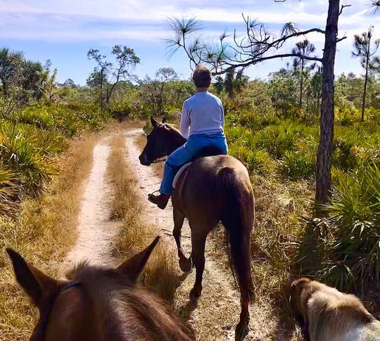 I didn't get to ride as often as I'd have liked to, but did have a few glorious days in the saddle, like this one, with my dear friend Sally