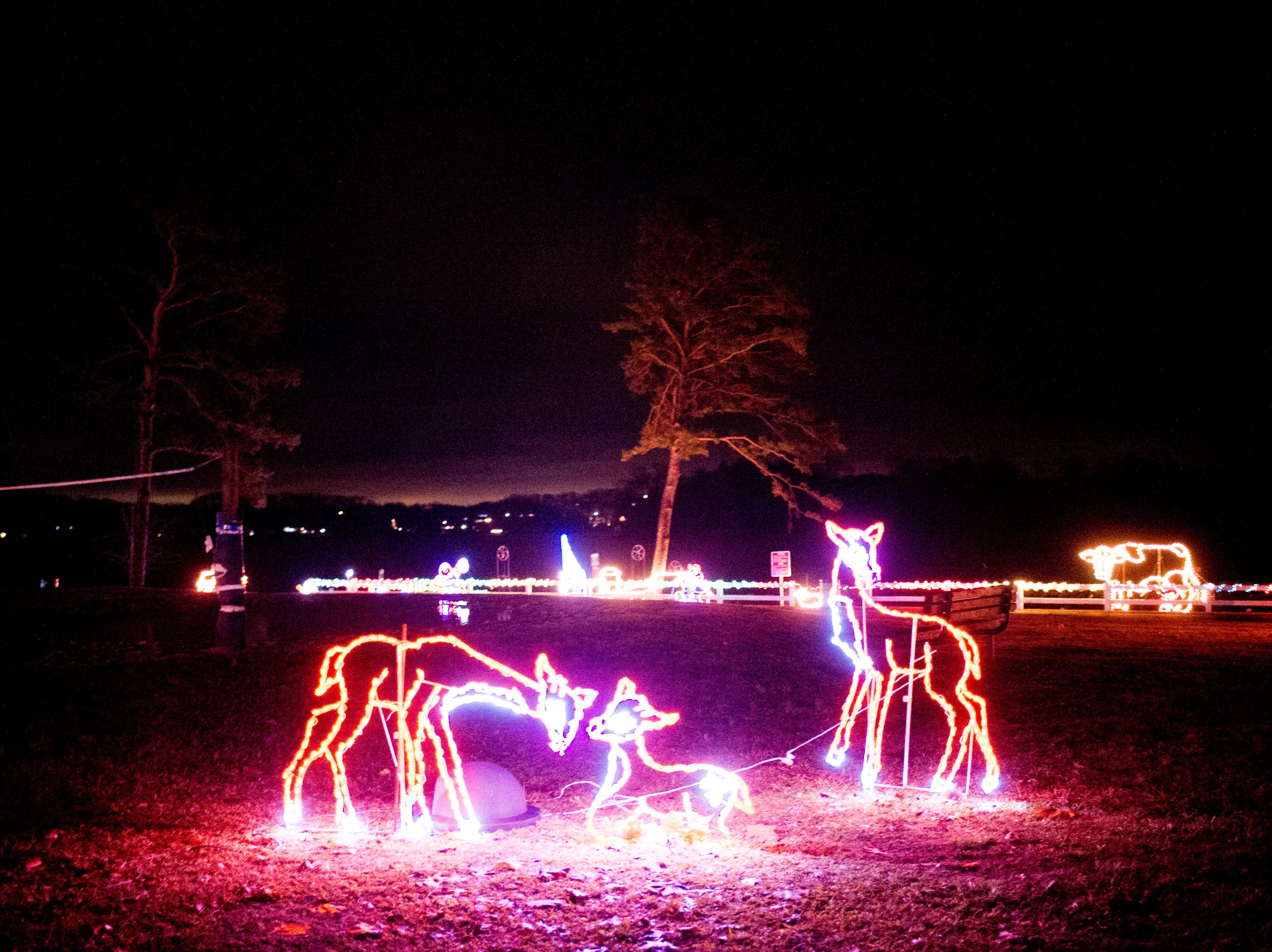 Deer lights at Knox CountyÕs 20th annual Holiday Festival of Lights kick off at The Cove at Concord Park in Farragut, Tennessee on Friday, December 21, 2018. The family-friendly event is free and will run through Dec. 29 from 6 to 9 p.m., excluding Christmas Eve and Christmas Day.