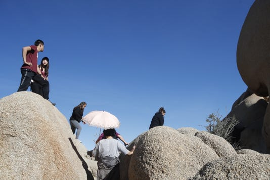 Keep Joshua Tree National Park safe by closing it during the