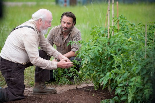 "Hershel (Scott Wilson, left) and Rick (Andrew Lincoln) face threats besides zombies in ""The Walking Dead."""