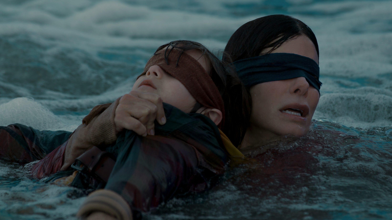 Bird Box What The Critics Say About Sandra Bullocks Netflix Drama