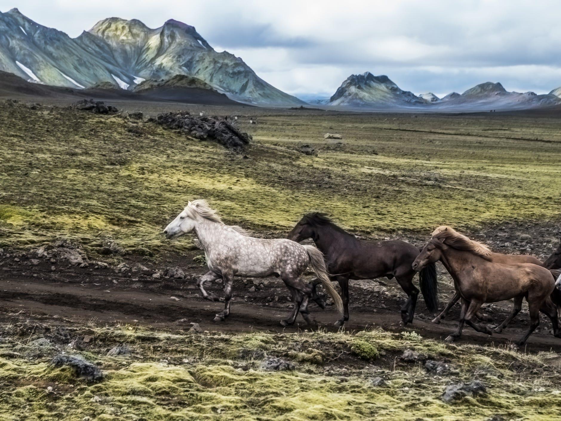 Thórsmörk in Iceland.