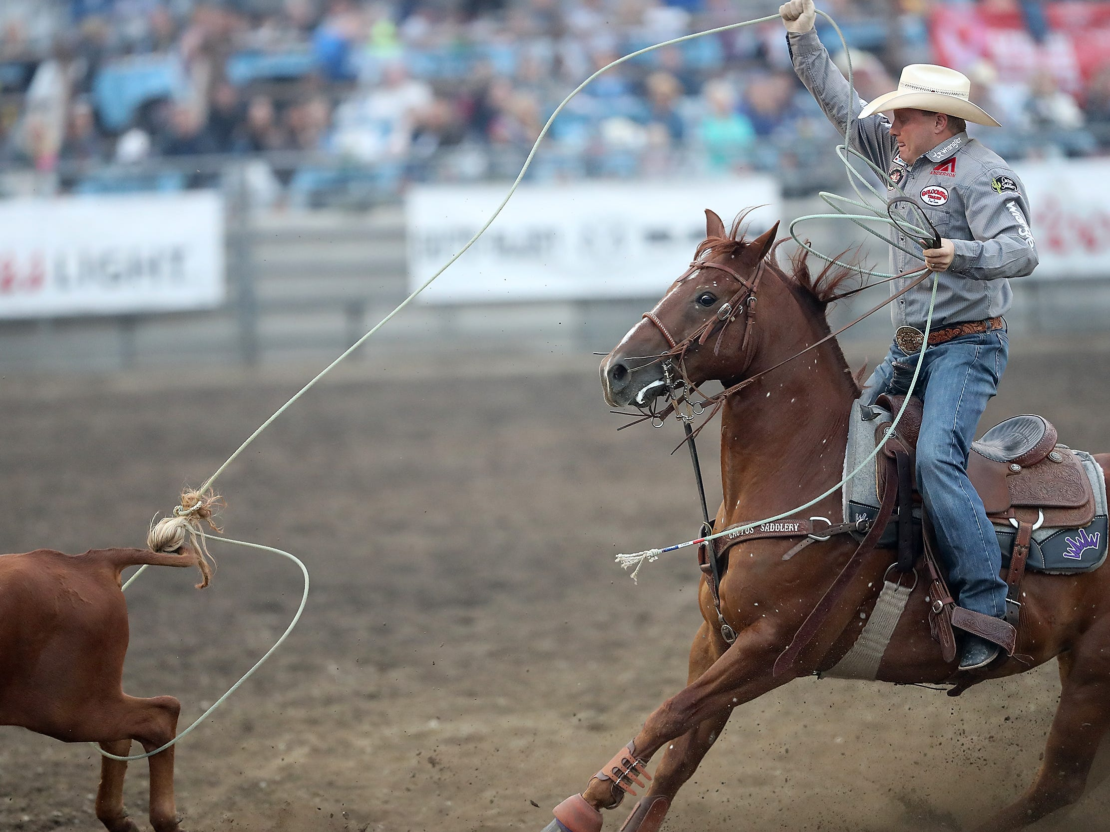 Brady Minor, or Ellensburg, WA, ropes the heels of a steer during the Team Roping event at the Kitsap County Fair & Stampede in Bremerton, Washington on Friday, August 24. 2018.