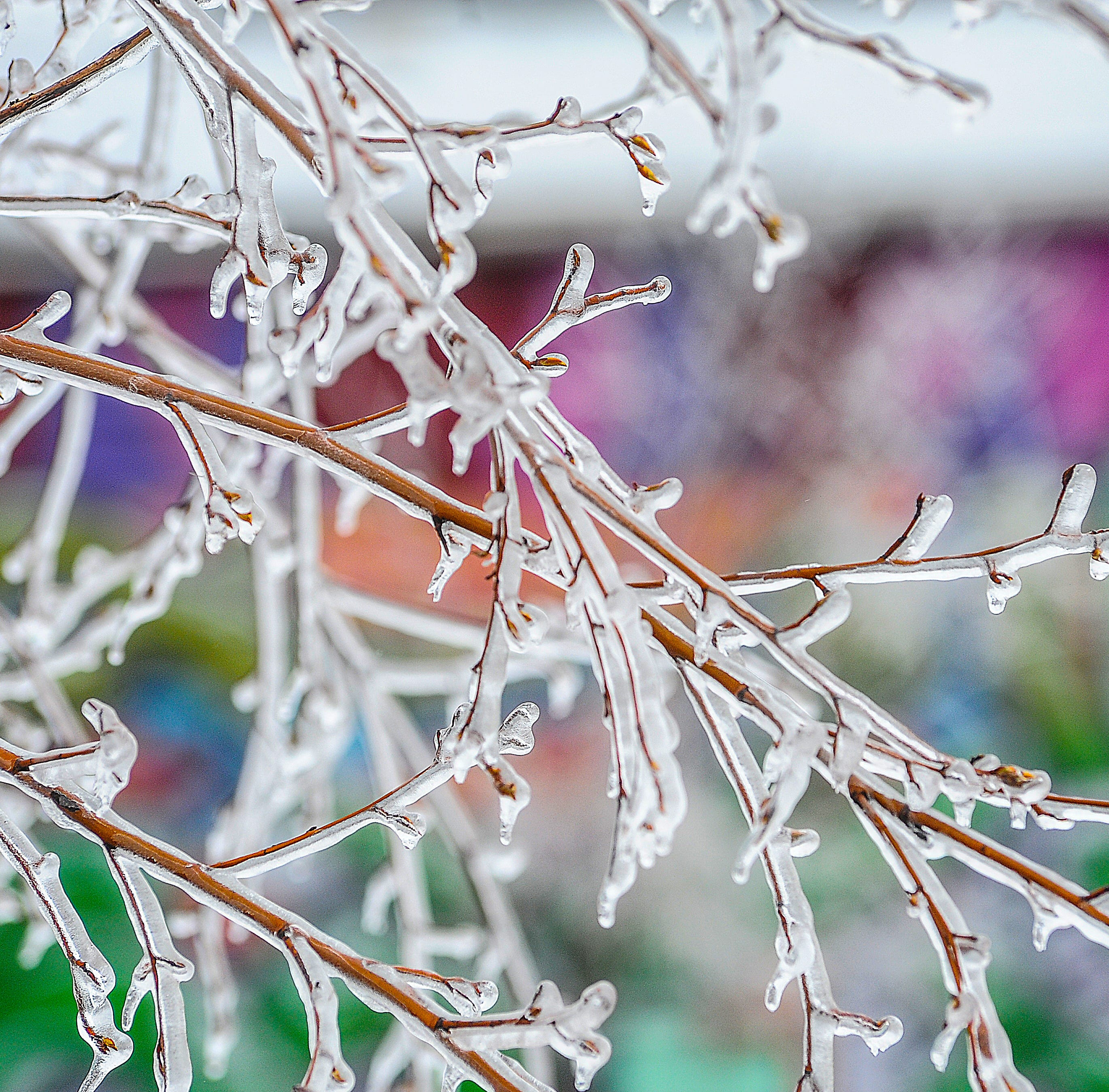 Freezing rain, sleet, snow in forecast for Lansing area Tuesday night, Wednesday