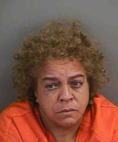 Florida woman held up postal truck with a plastic gun and fled on a tricycle, police say