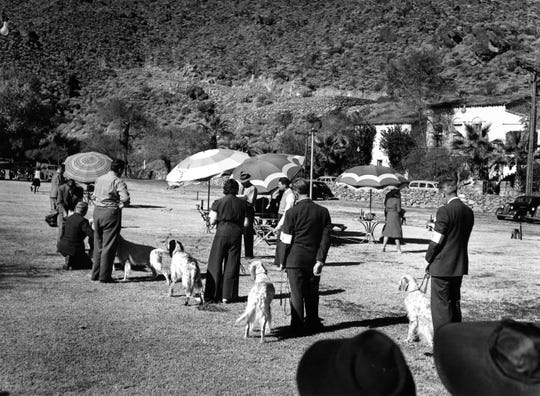 All Breed Dog Show on the Mashie Golf Course at The Desert Inn c.1938.